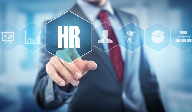 HR chịu trách nhiệm quản lý nguồn nhân lực, phát triển đội ngũ nhân sự của công ty